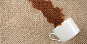 How to clean the carpet like a pro