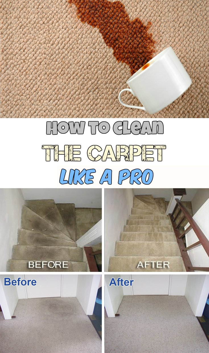 How To Clean The Carpet Like A Pro Getcleaningtips Net