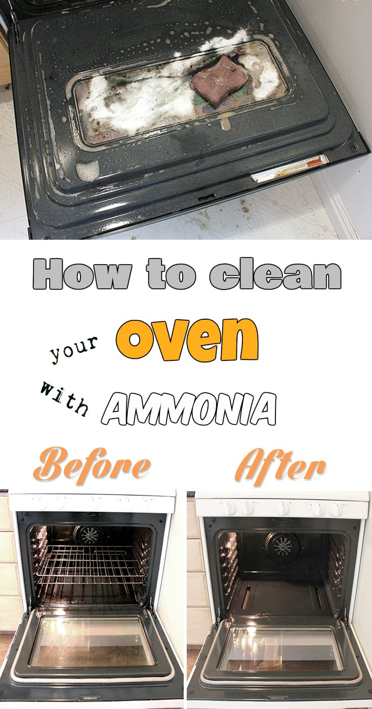 how to clean your oven with ammonia. Black Bedroom Furniture Sets. Home Design Ideas