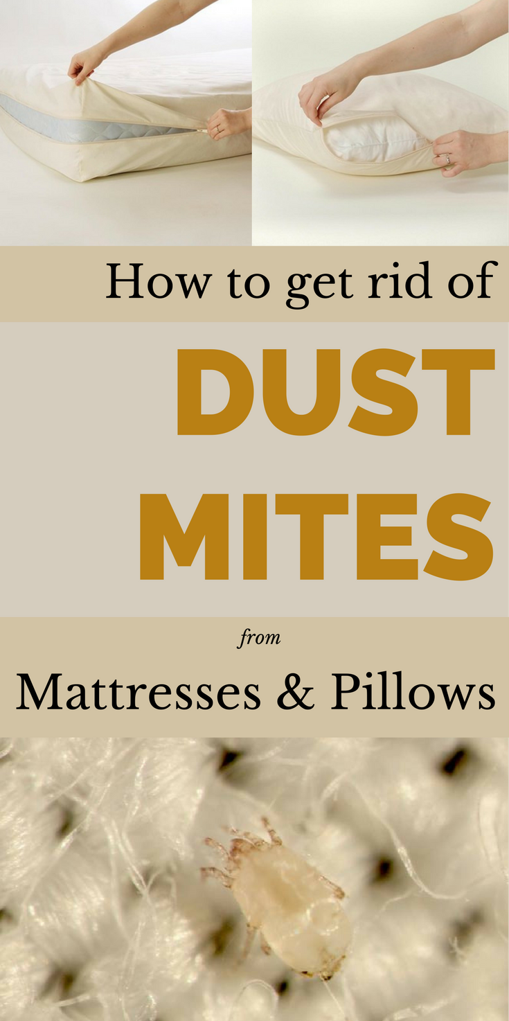 How To Get Rid Of Dust Mites From Mattresses And Pillows