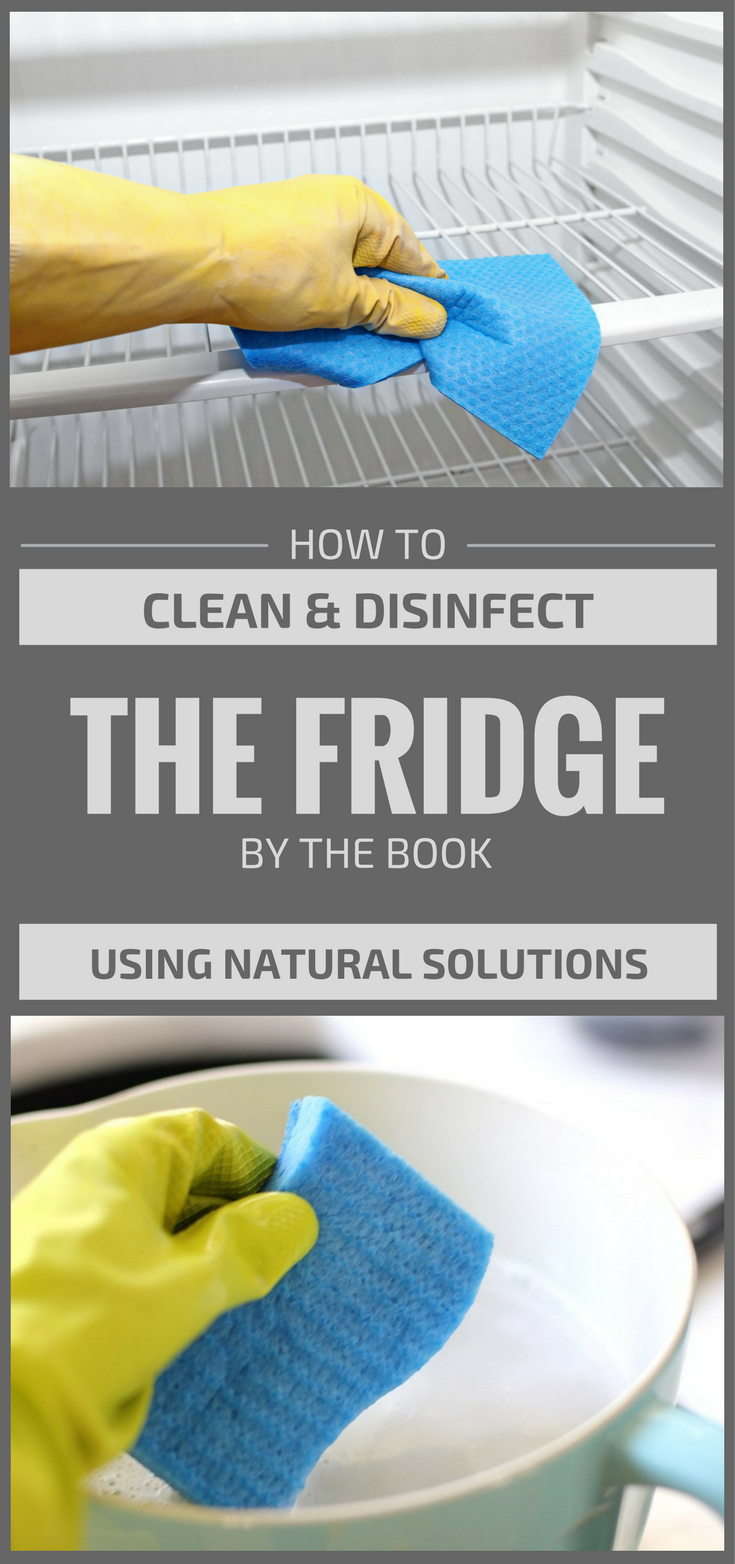 How To Clean And Disinfect The Fridge By The Book Using
