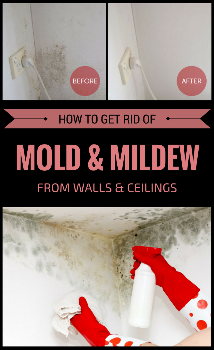 how to get rid of mold and mildew from walls and ceilings. Black Bedroom Furniture Sets. Home Design Ideas